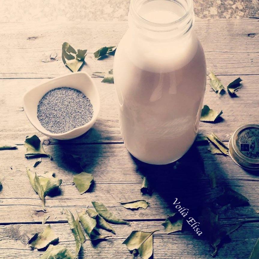 leche-vegetal-semillas-amapola-sin-lactosa-crudivegana-calcio-calmante