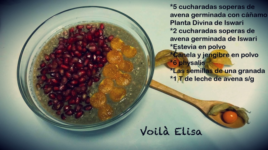 porridge-gachas-antioxidantes-granada-physalis-diabetes-avena-iswari-superalimento